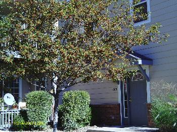 Condo for Rent in Greeley