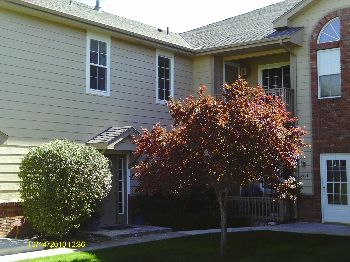 vacation rental 70301063453 Lakewood CO