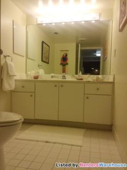 2555 Collins Ave Apt 604 Miami Beach FL Apartment for Rent