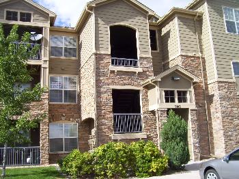apartments and houses for rent near me in parker