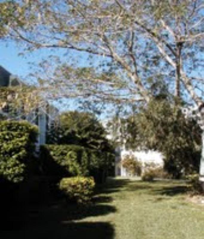 miami 1 bedroom rental at 95 ave miami fl 1 990 - One Bedroom Apartments In Miami