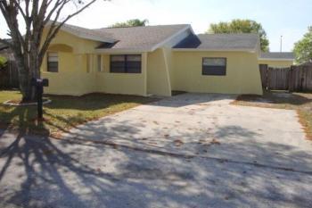10206 Vista Cove Ct Tampa FL Rental House