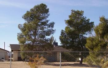 2516 Balsa Ave Yucca Valley CA Apartment for Rent