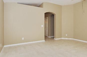11228 Summer Star Dr Riverview FL Home Rental