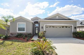 11302 Flora Springs Dr Riverview FL House for Rent