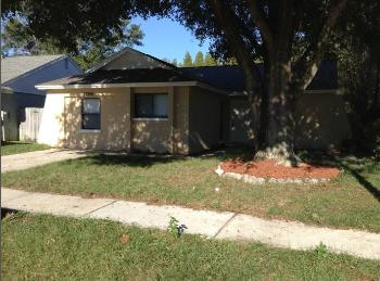 12356 Witheridge Dr Tampa FL Rental House
