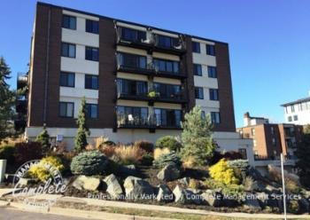 Apartments and houses for rent near me in 55403 for 48 groveland terrace minneapolis mn